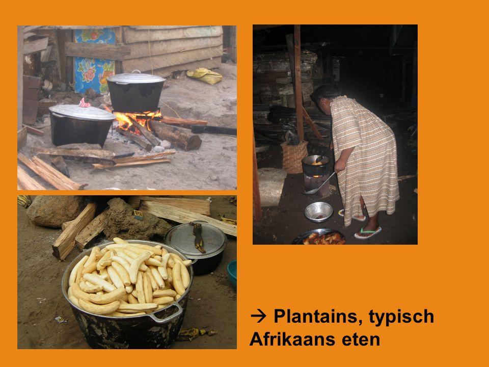  Plantains, typisch Afrikaans eten