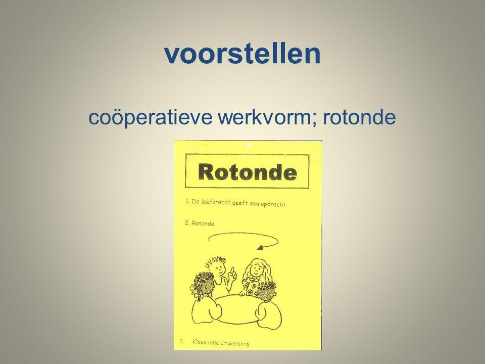 voorstellen coöperatieve werkvorm; rotonde