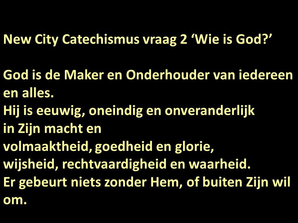 New City Catechismus vraag 2 'Wie is God ' God is de Maker en Onderhouder van iedereen en alles.