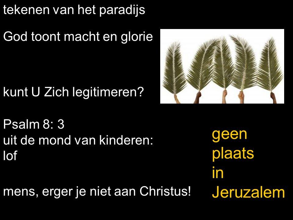 Stille Week Hosanna > Kruisig Hem je ziet God in Christus.