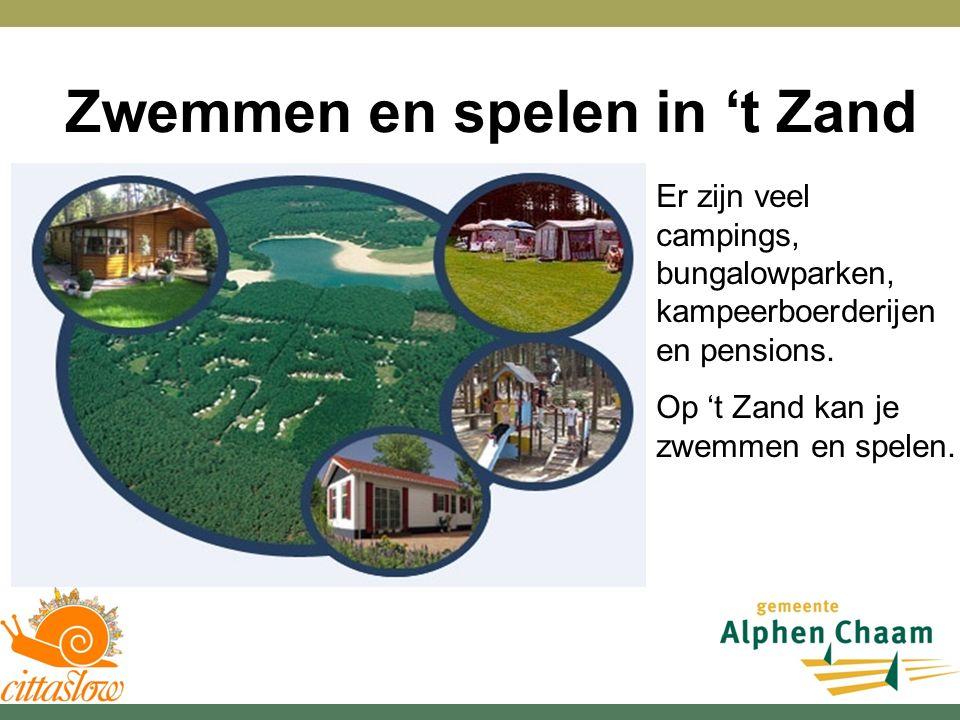 Zwemmen en spelen in 't Zand Er zijn veel campings, bungalowparken, kampeerboerderijen en pensions.