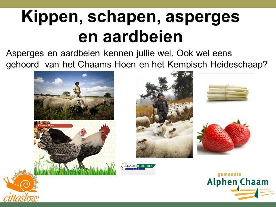 Kippen, schapen, asperges en aardbeien Asperges en aardbeien kennen jullie wel.