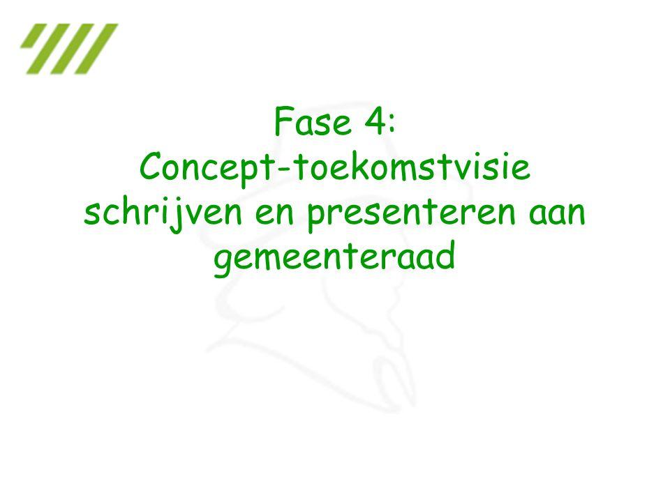 Fase 4: Concept-toekomstvisie schrijven en presenteren aan gemeenteraad