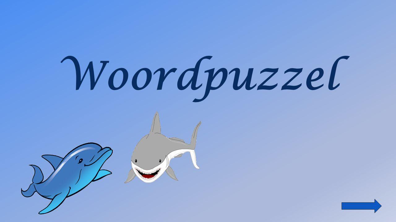 Woordpuzzel