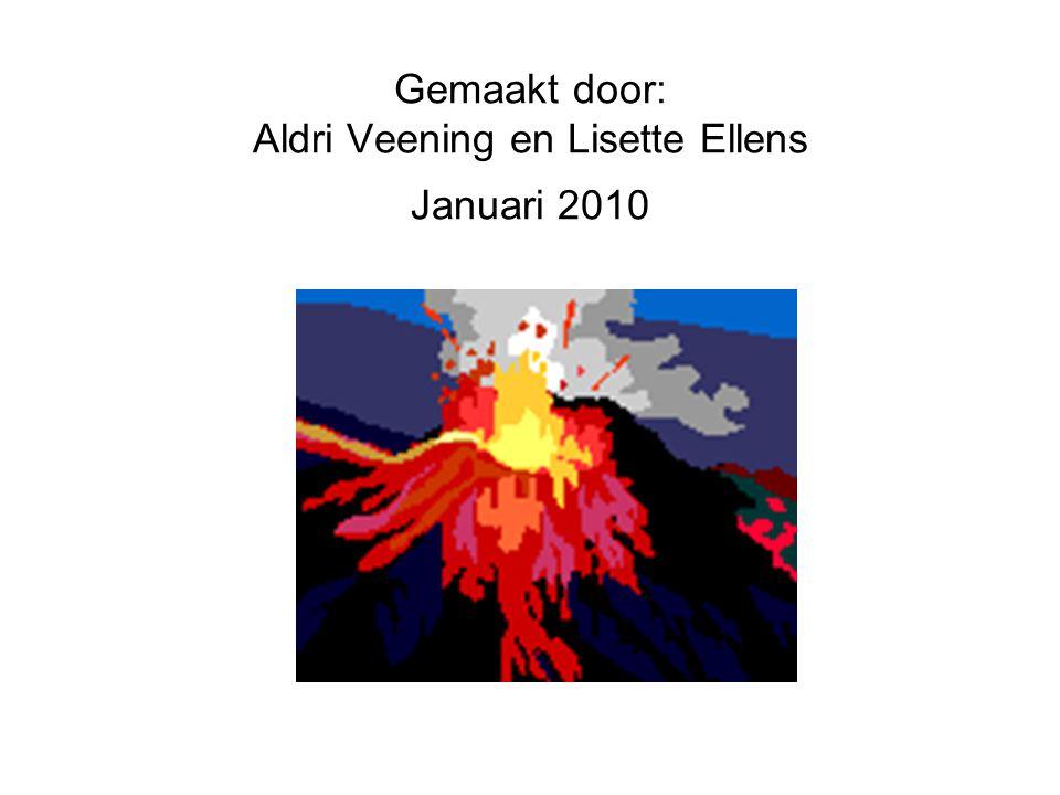 Gemaakt door: Aldri Veening en Lisette Ellens Januari 2010