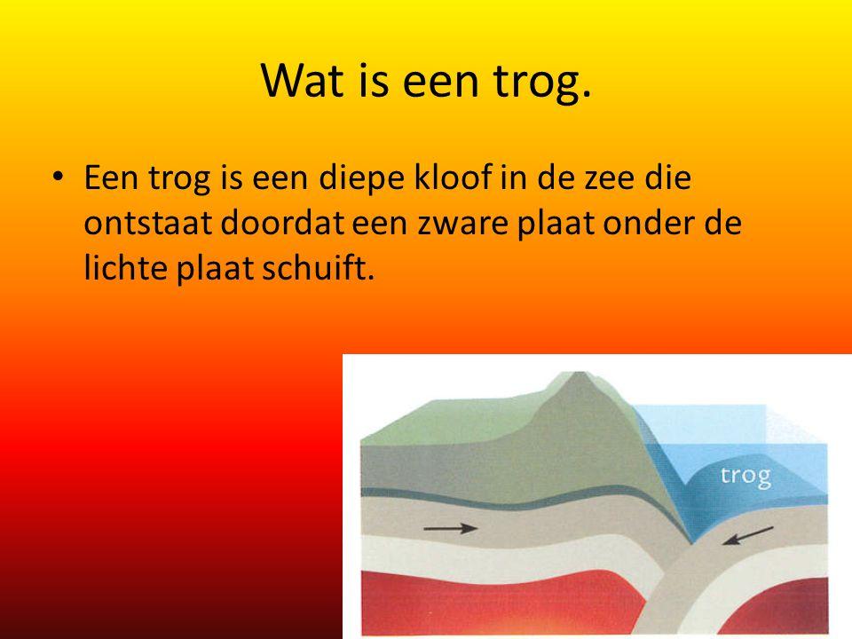 Wat is een trog. Een trog is een diepe kloof in de zee die ontstaat doordat een zware plaat onder de lichte plaat schuift.