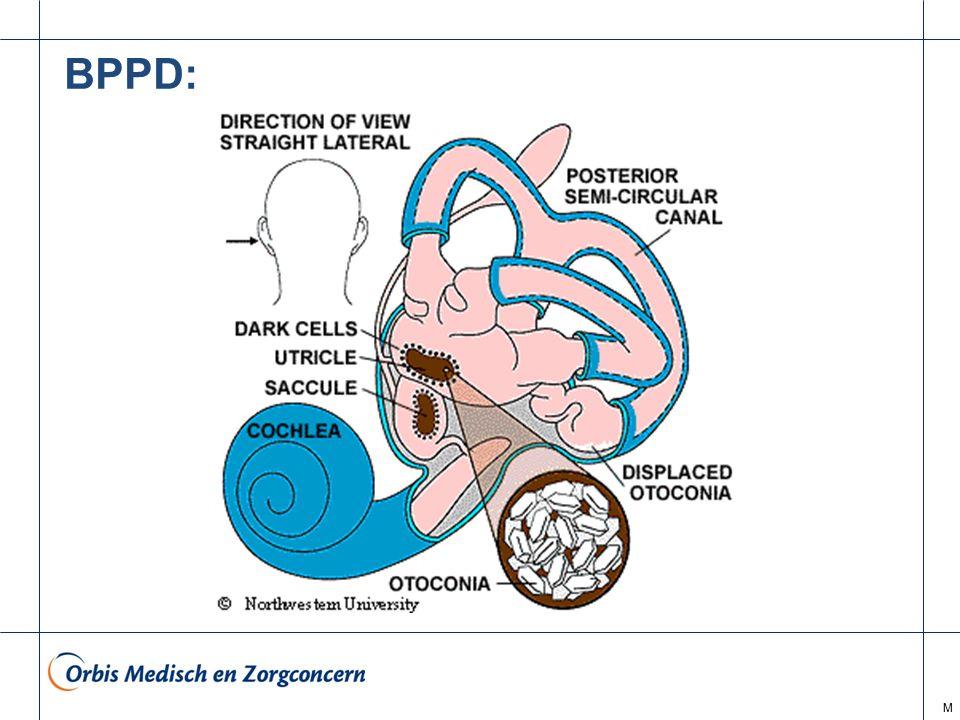 M BPPD: