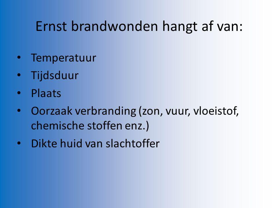 Ernst brandwonden hangt af van: Temperatuur Tijdsduur Plaats Oorzaak verbranding (zon, vuur, vloeistof, chemische stoffen enz.) Dikte huid van slachto