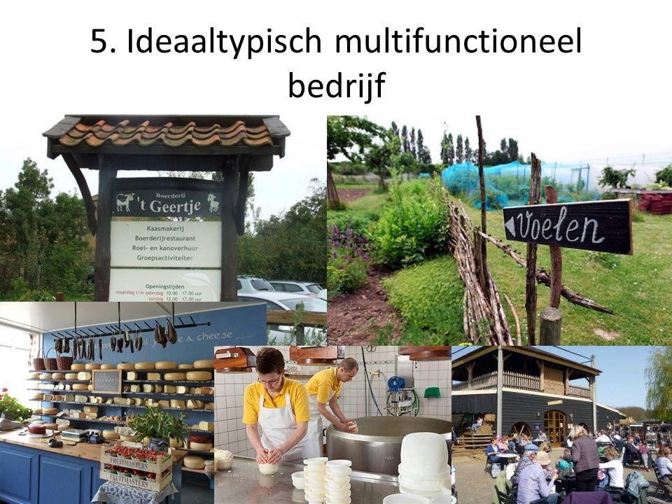 5. Ideaaltypisch multifunctioneel bedrijf