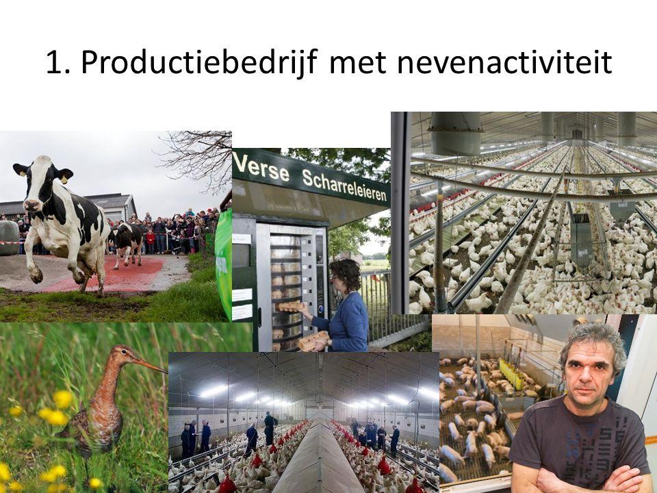 1. Productiebedrijf met nevenactiviteit