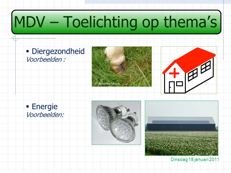 MDV – Toelichting op thema's Dinsdag 18 januari 2011  Diergezondheid Voorbeelden :  Energie Voorbeelden: