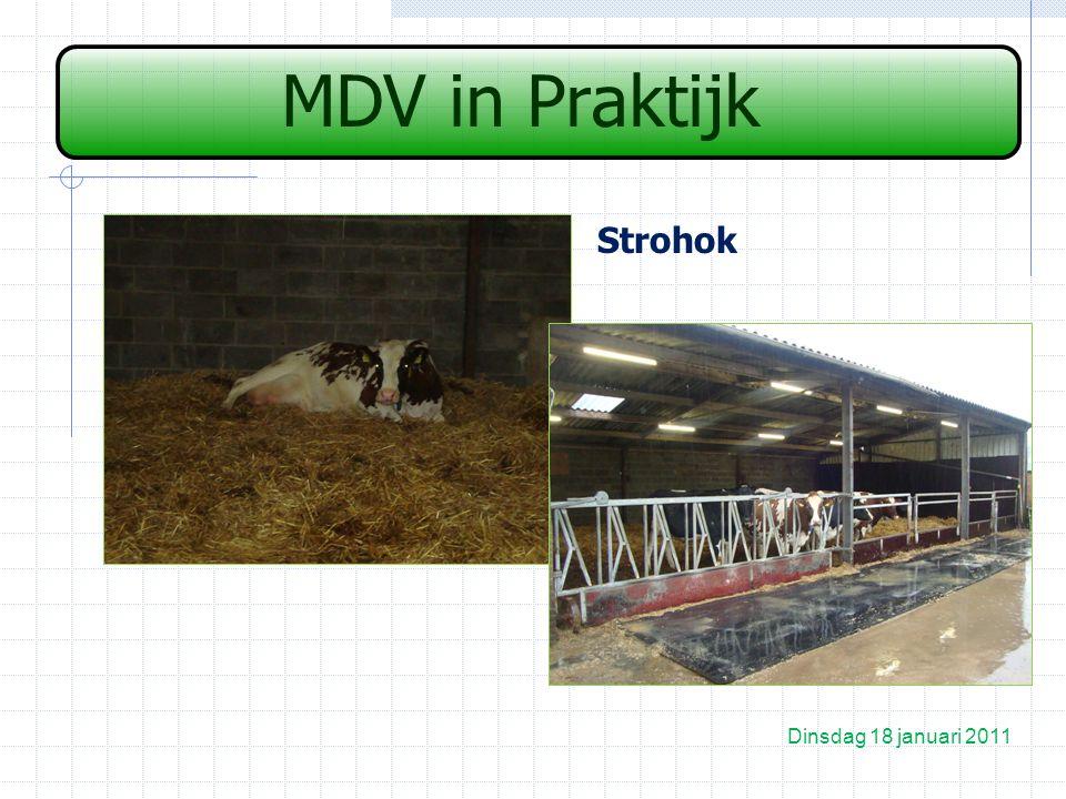 MDV in Praktijk Strohok Dinsdag 18 januari 2011