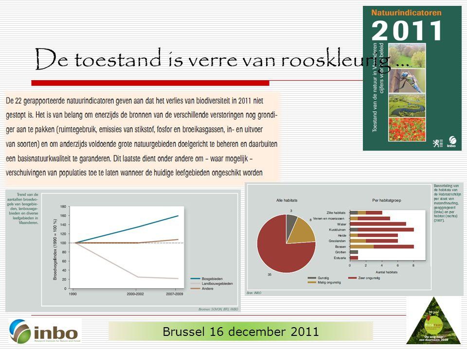 De toestand is verre van rooskleurig … Brussel 16 december 2011