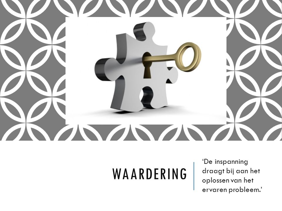 WAARDERING 'De inspanning draagt bij aan het oplossen van het ervaren probleem.'