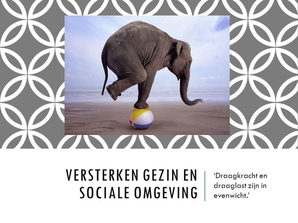 VERSTERKEN GEZIN EN SOCIALE OMGEVING 'Draagkracht en draaglast zijn in evenwicht.'