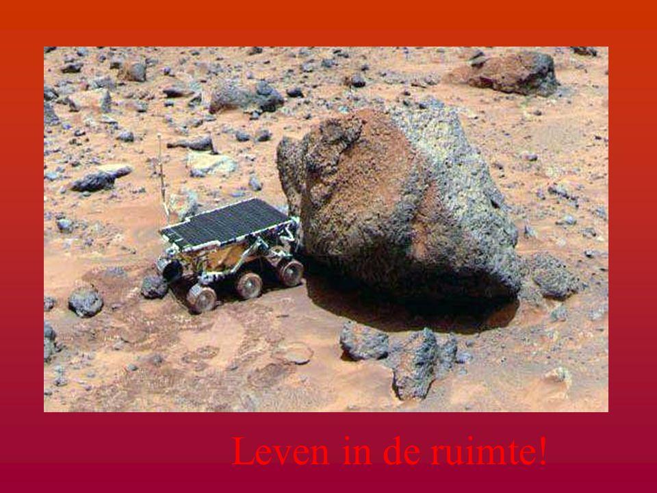 De poolkappen van Mars! De poolkappen van Mars!