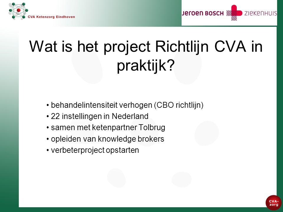 Wat is het project Richtlijn CVA in praktijk.