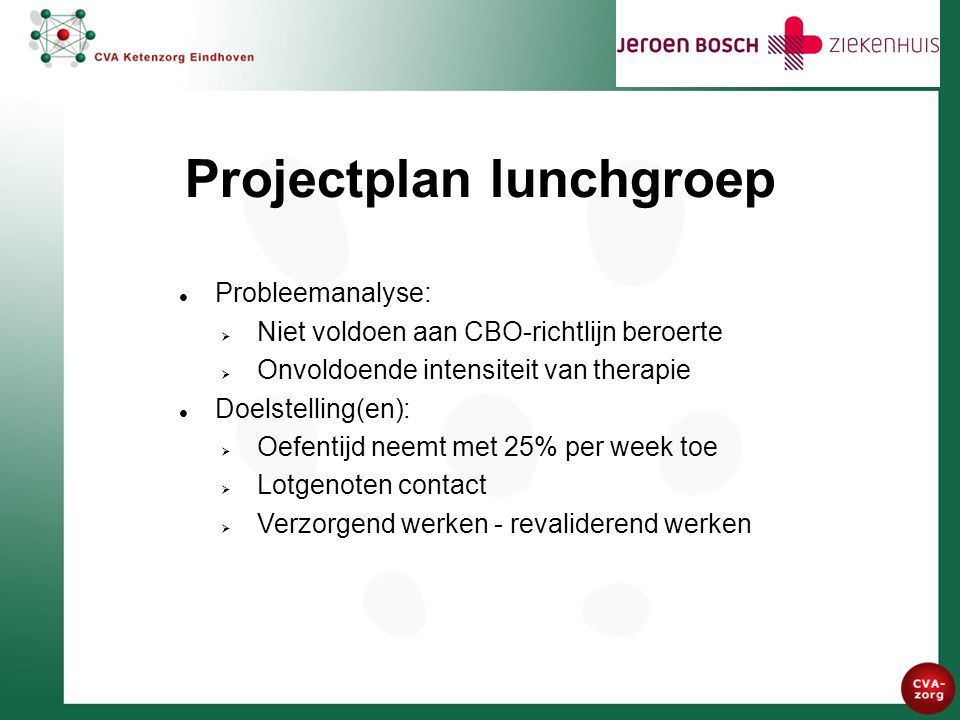 Vervolg projectplan lunchgroep SWOT analyse:  Sterke punten  Zwakke punten Financiële aspecten:  Donatie vanuit stichting 'Vrienden van het JBZ'