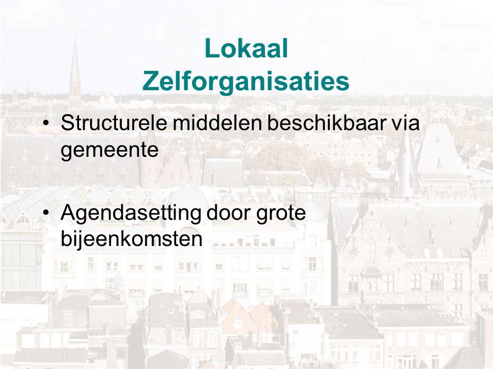 Lokaal Zelforganisaties Structurele middelen beschikbaar via gemeente Agendasetting door grote bijeenkomsten