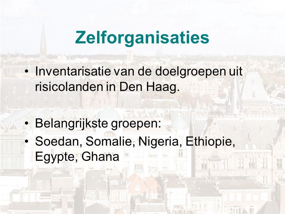 Zelforganisaties Inventarisatie van de doelgroepen uit risicolanden in Den Haag.