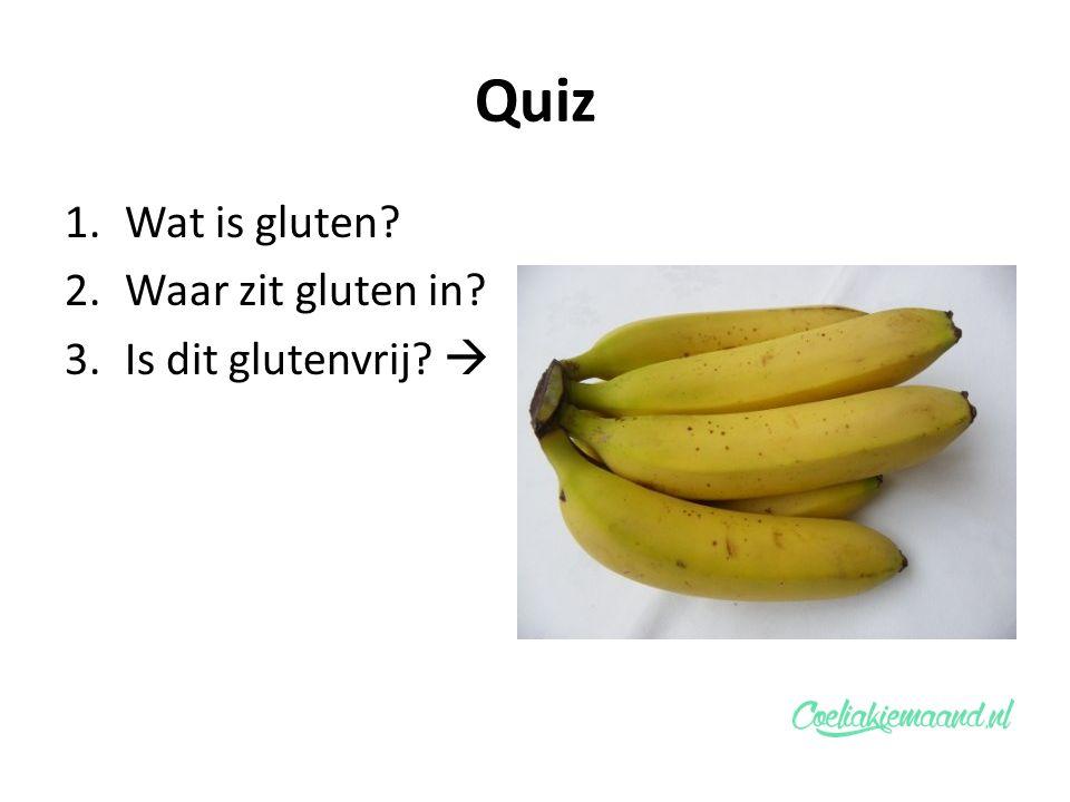 Quiz 1.Wat is gluten? 2.Waar zit gluten in? 3.Is dit glutenvrij? 