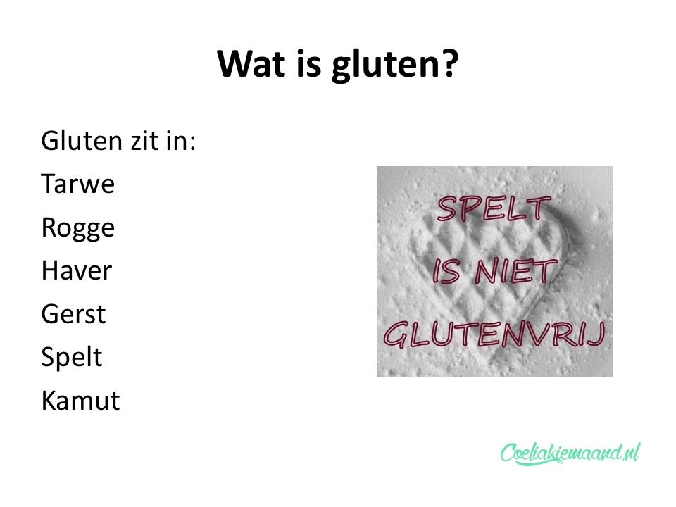Wat is gluten? Gluten zit in: Tarwe Rogge Haver Gerst Spelt Kamut