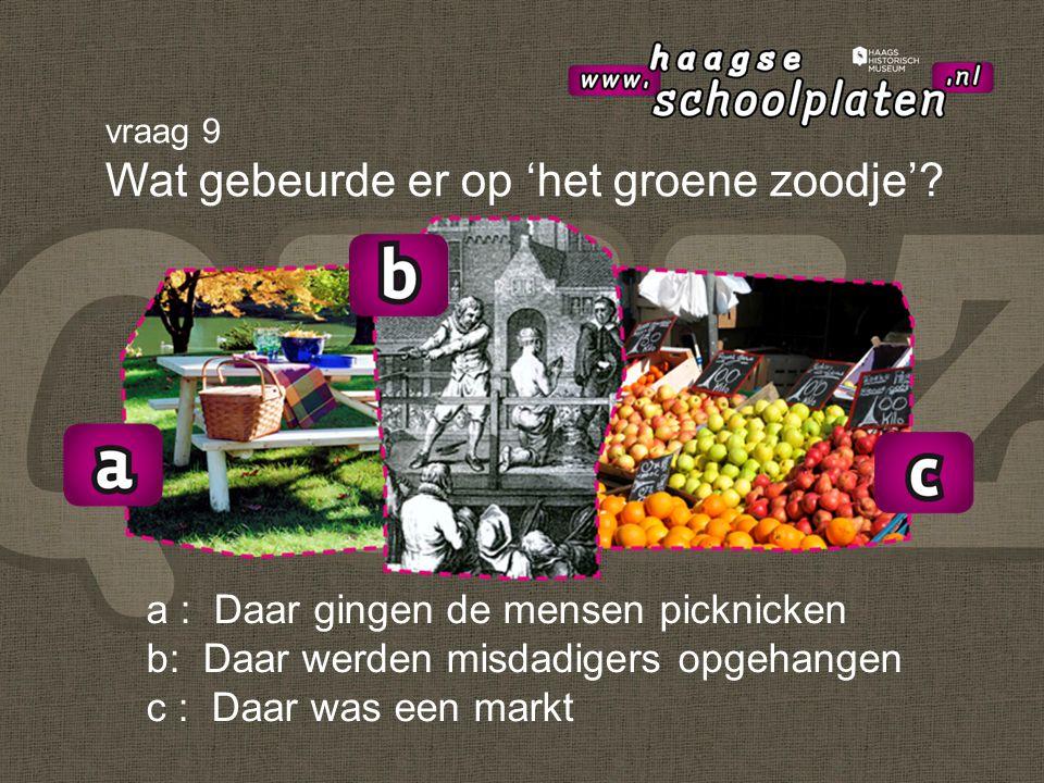 a : Daar gingen de mensen picknicken b: Daar werden misdadigers opgehangen c : Daar was een markt vraag 9 Wat gebeurde er op 'het groene zoodje'