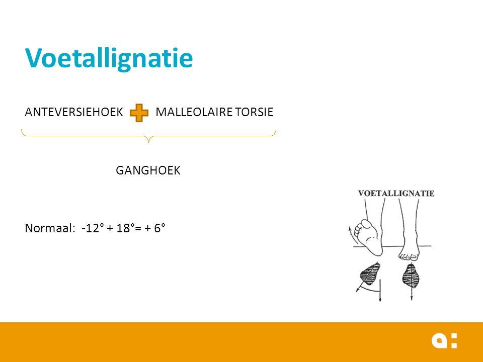 ANTEVERSIEHOEK MALLEOLAIRE TORSIE GANGHOEK Normaal: -12° + 18°= + 6° Voetallignatie