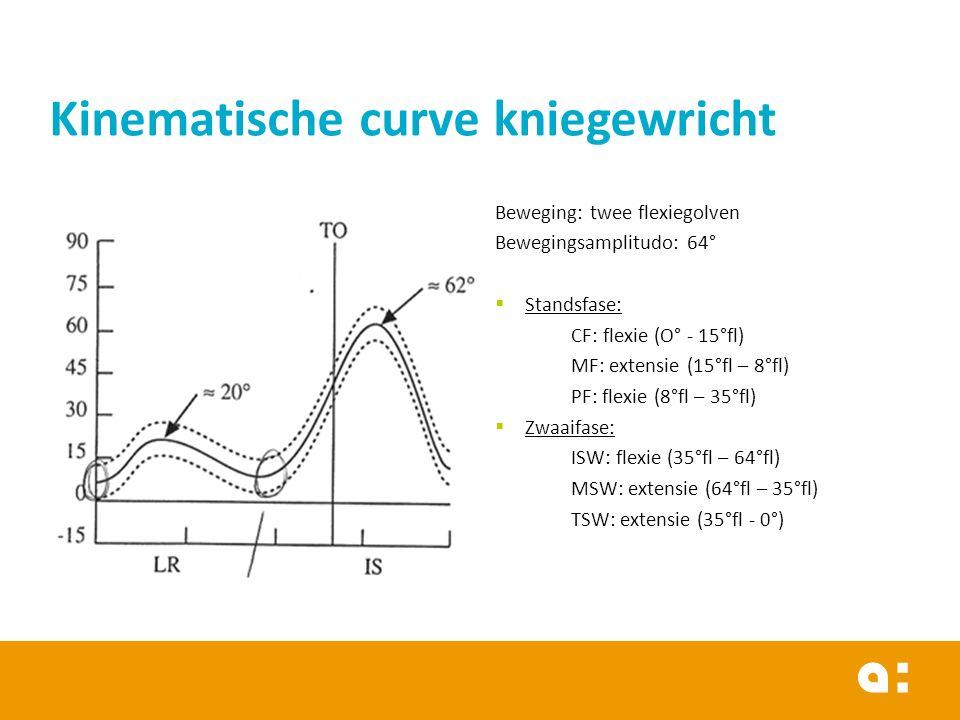 Beweging: twee flexiegolven Bewegingsamplitudo: 64°  Standsfase: CF: flexie (O° - 15°fl) MF: extensie (15°fl – 8°fl) PF: flexie (8°fl – 35°fl)  Zwaaifase: ISW: flexie (35°fl – 64°fl) MSW: extensie (64°fl – 35°fl) TSW: extensie (35°fl - 0°) Kinematische curve kniegewricht