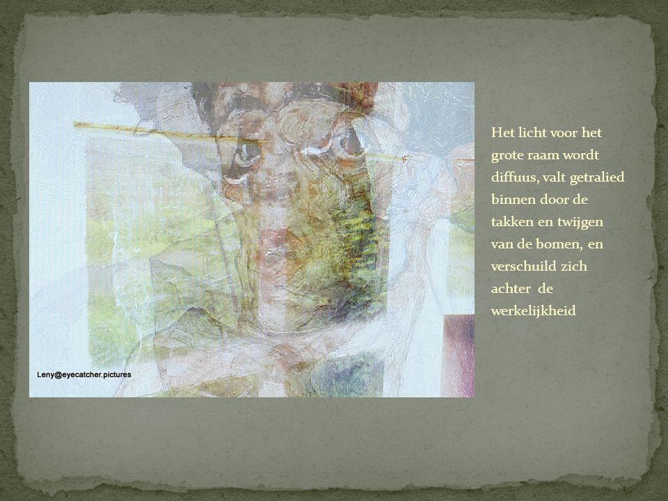 Het licht voor het grote raam wordt diffuus, valt getralied binnen door de takken en twijgen van de bomen, en verschuild zich achter de werkelijkheid