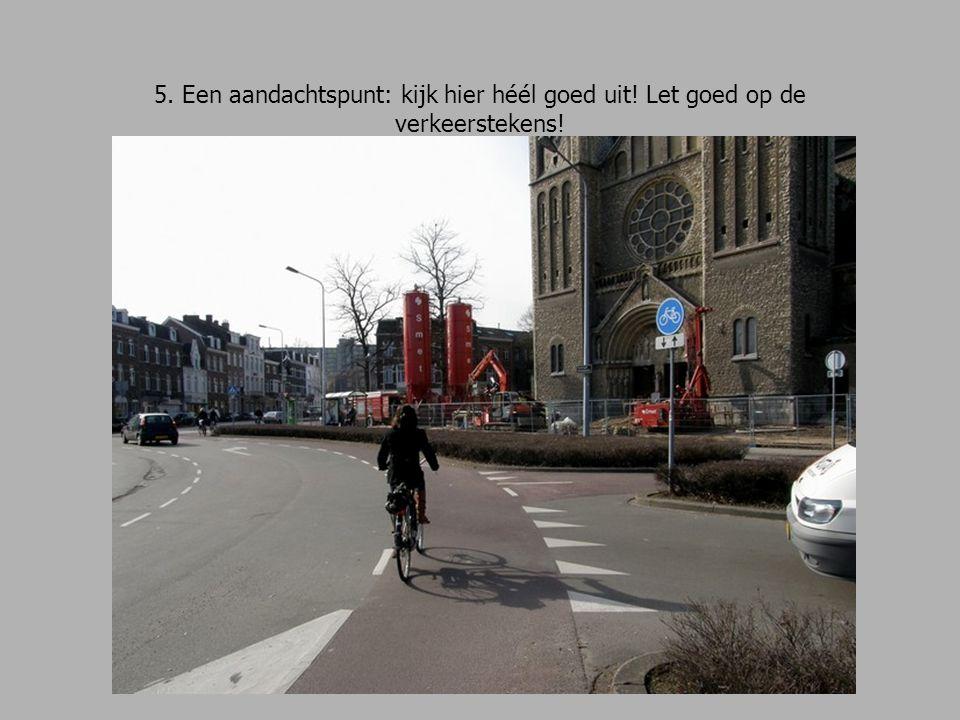 16.We fietsen de Elisabeth Strouvenlaan in, richting Hertogsingel.