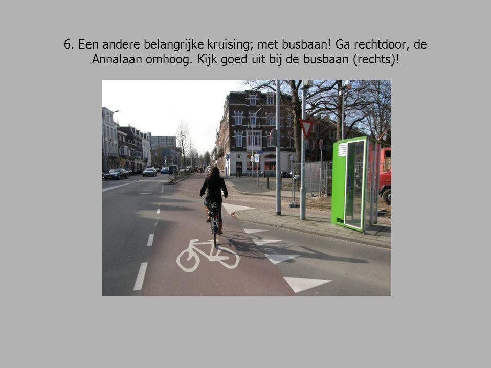 6. Een andere belangrijke kruising; met busbaan. Ga rechtdoor, de Annalaan omhoog.
