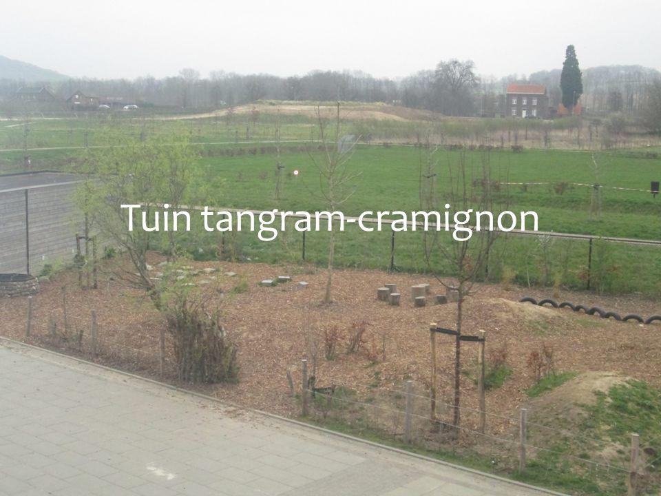 Tuin tangram-cramignon