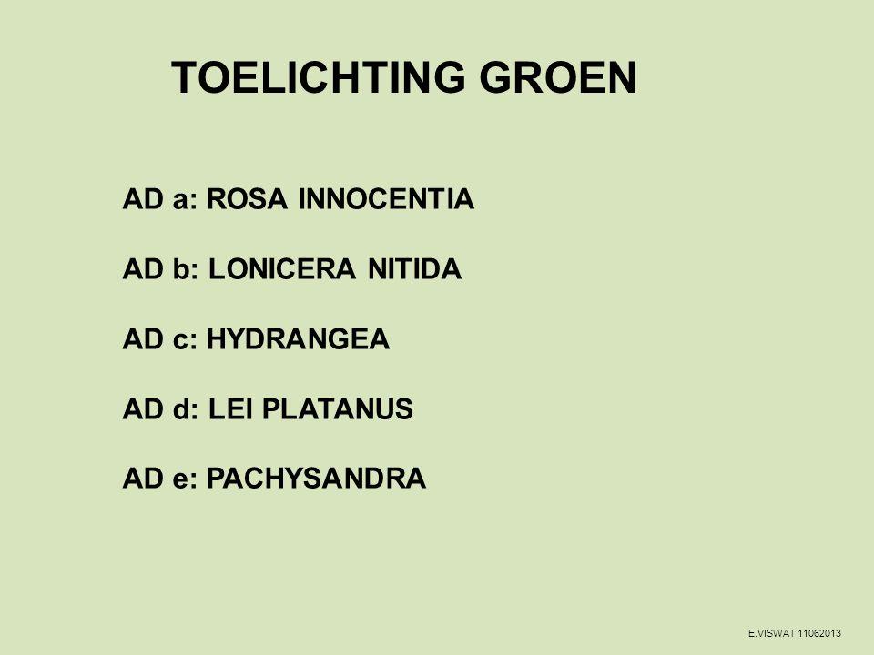 TOELICHTING GROEN AD a: ROSA INNOCENTIA AD b: LONICERA NITIDA AD c: HYDRANGEA AD d: LEI PLATANUS AD e: PACHYSANDRA
