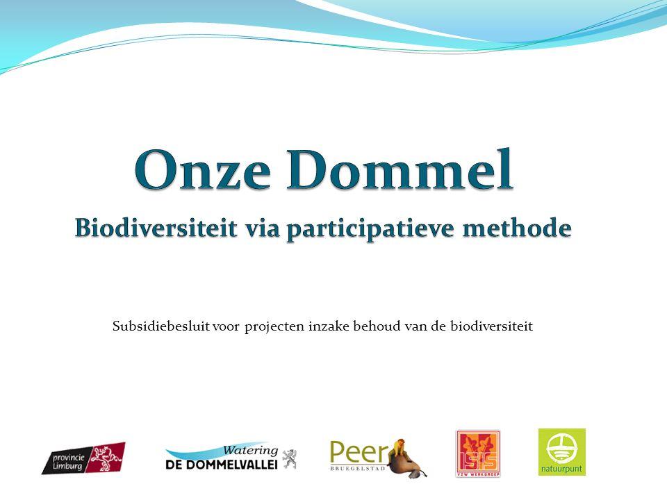 Onze uitdagingen Wetgeving Europese Kaderrichtlijn Water (goede kwaliteit) Decreet integraal waterbeleid Vismigratieknelpunten Planologie Gemeentelijke plannen Provinciaal Milieubeleidsplan Waterbeheerplannen 2010: Internationaal jaar van de biodiversiteit Realisaties