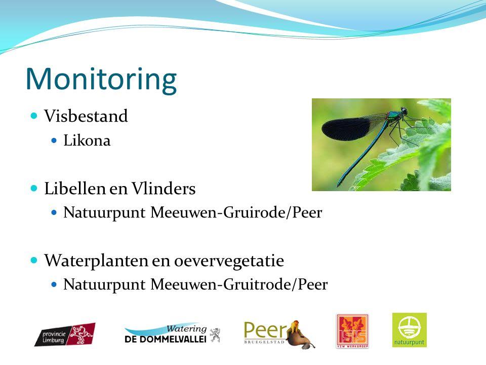 Monitoring Visbestand Likona Libellen en Vlinders Natuurpunt Meeuwen-Gruirode/Peer Waterplanten en oevervegetatie Natuurpunt Meeuwen-Gruitrode/Peer