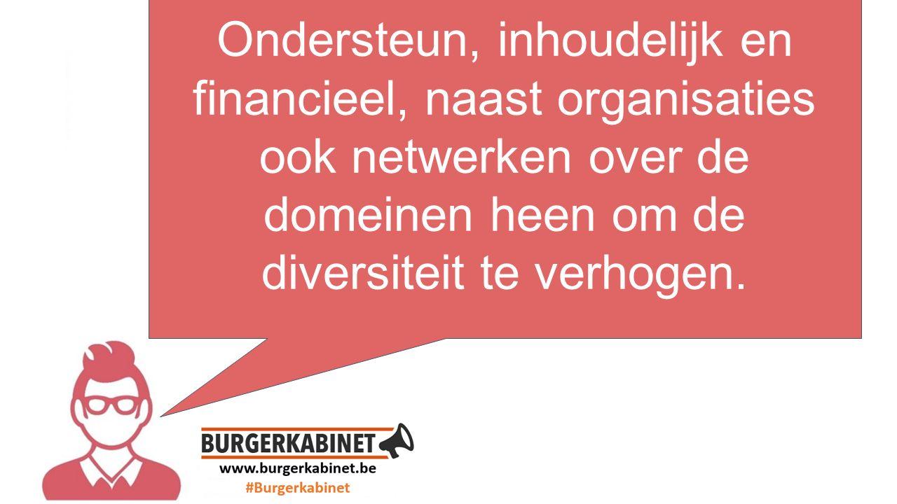 tekst hier Ondersteun, inhoudelijk en financieel, naast organisaties ook netwerken over de domeinen heen om de diversiteit te verhogen.