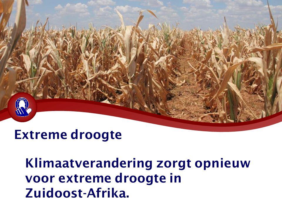 Extreme droogte Klimaatverandering zorgt opnieuw voor extreme droogte in Zuidoost-Afrika.