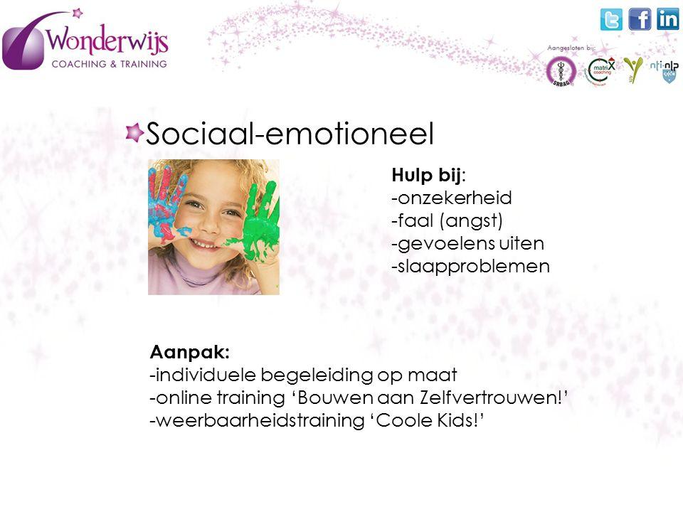 Sociaal-emotioneel Hulp bij : -onzekerheid -faal (angst) -gevoelens uiten -slaapproblemen Aanpak: -individuele begeleiding op maat -online training 'Bouwen aan Zelfvertrouwen!' -weerbaarheidstraining 'Coole Kids!'