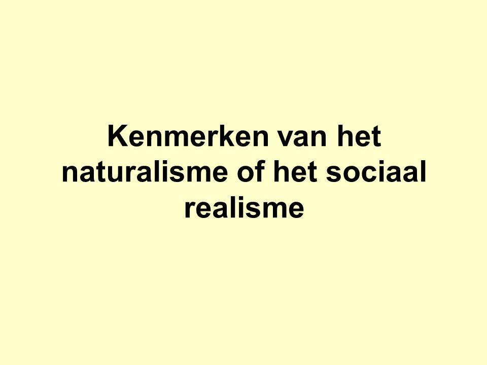 Kenmerken van het naturalisme of het sociaal realisme