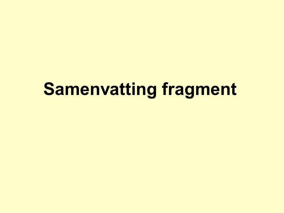 Samenvatting fragment