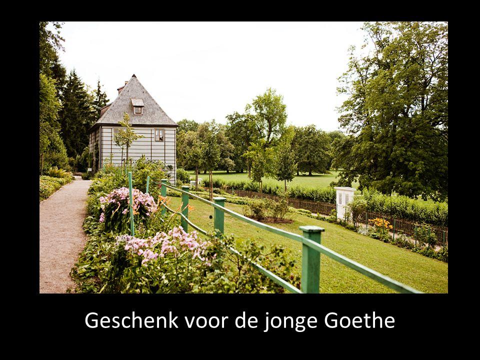 Geschenk voor de jonge Goethe