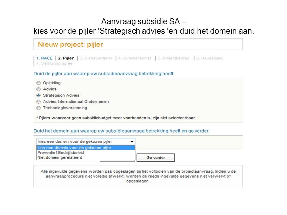 Aanvraag subsidie SA – kies voor de pijler 'Strategisch advies 'en duid het domein aan.