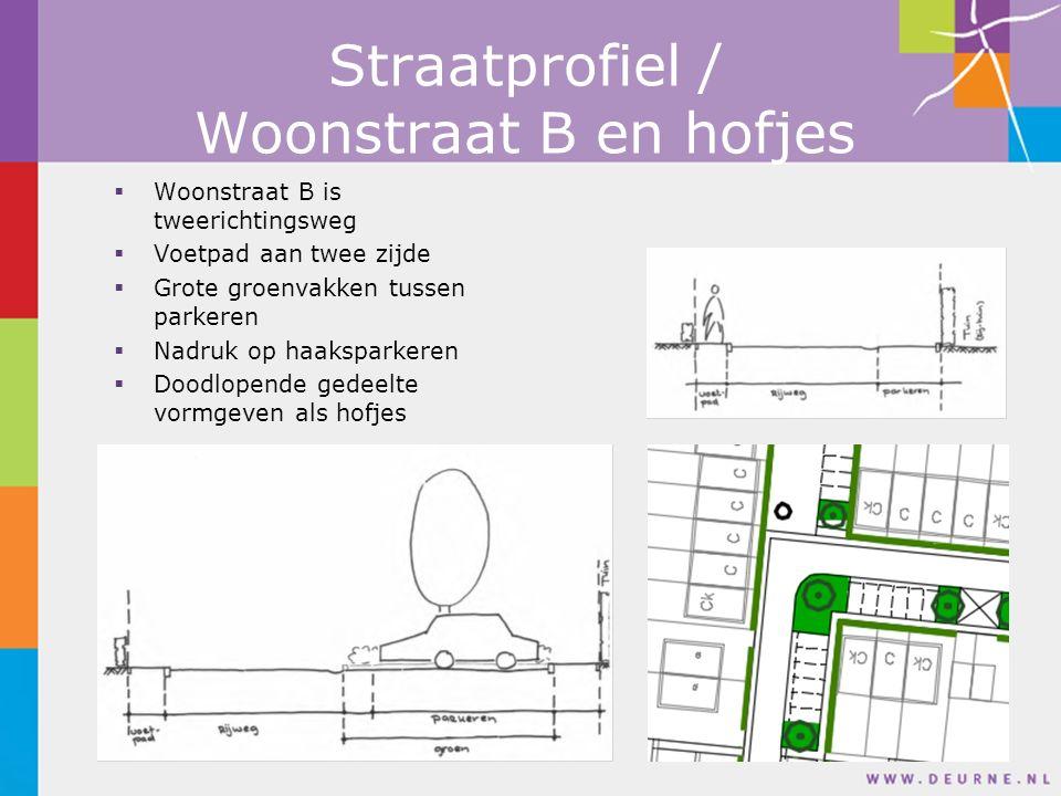 Woonstraat B is tweerichtingsweg  Voetpad aan twee zijde  Grote groenvakken tussen parkeren  Nadruk op haaksparkeren  Doodlopende gedeelte vormgeven als hofjes Straatprofiel / Woonstraat B en hofjes