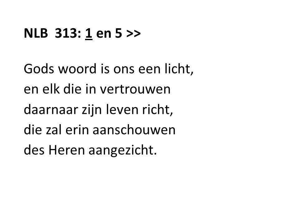 NLB 313: 1 en 5 >> Gods woord is ons een licht, en elk die in vertrouwen daarnaar zijn leven richt, die zal erin aanschouwen des Heren aangezicht.