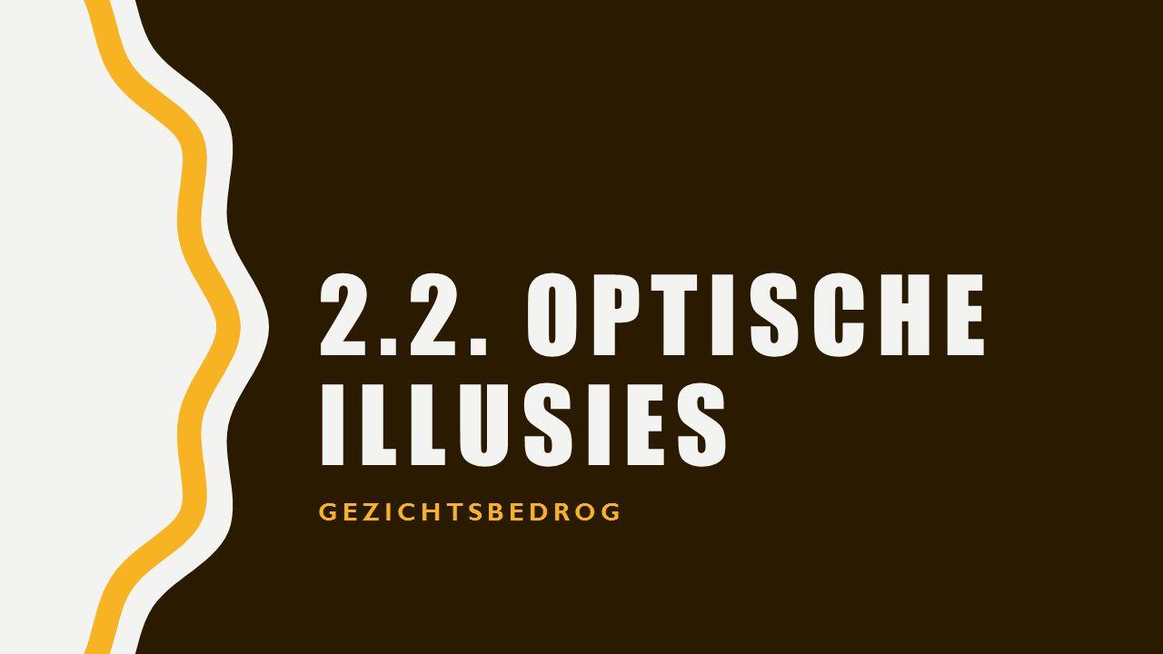2.2. OPTISCHE ILLUSIES GEZICHTSBEDROG