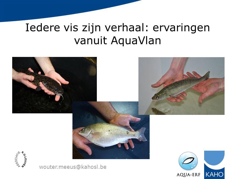 Iedere vis zijn verhaal: ervaringen vanuit AquaVlan wouter.meeus@kahosl.be