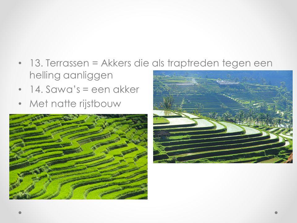 13. Terrassen = Akkers die als traptreden tegen een helling aanliggen 14. Sawa's = een akker Met natte rijstbouw