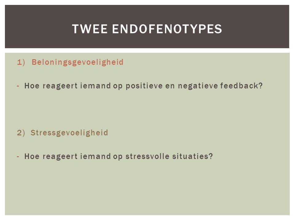 1)Beloningsgevoeligheid -Hoe reageert iemand op positieve en negatieve feedback? 2) Stressgevoeligheid -Hoe reageert iemand op stressvolle situaties?