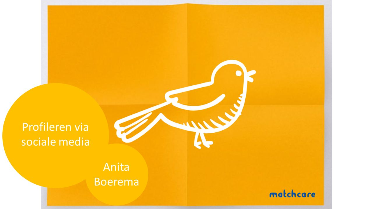 Profileren via sociale media Anita Boerema